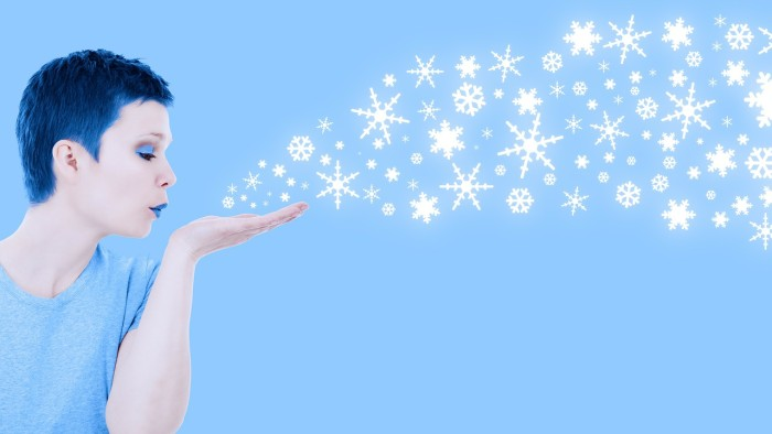 6 Schneeflocken